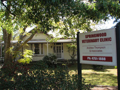 Springwood Veterinary Clinic